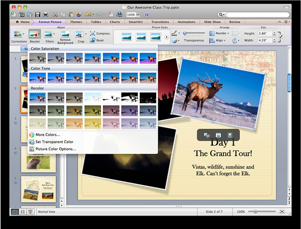 Picture editing in PowerPoint.