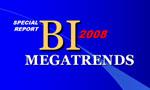 BI Megatrends 2008
